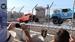 Stadium-Super-Trucks-2019-Video-MAIN-Goodwood-14022019.png